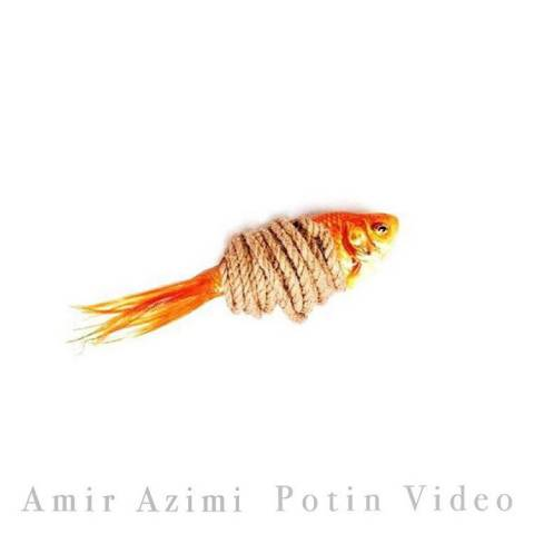 https://up.mybia4music.com/music/94/8/Amir-azimi-potin.jpg