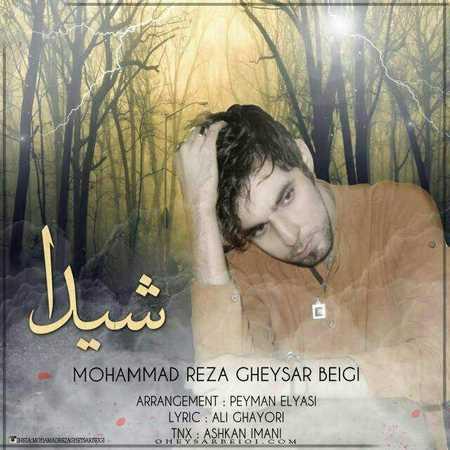 https://up.mybia4music.com/music/94/9/Mohammad%20Reza%20Gheysar%20Beigi%20-%20Sheyda.jpg