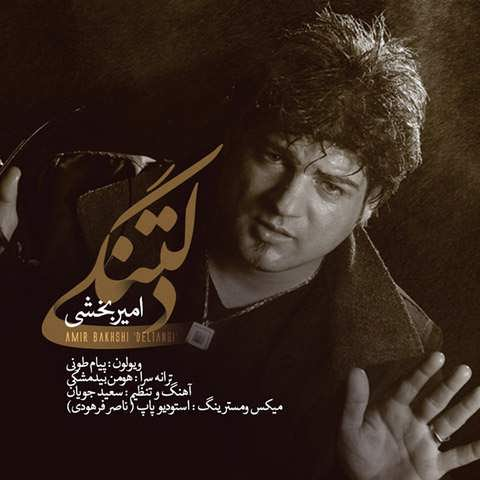 https://up.mybia4music.com/music/94/khordad/Amir%20Bakhshi%20-%20Deltangi.jpg