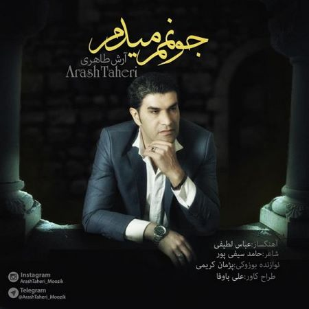https://up.mybia4music.com/music/95/1/Arash%20Taheri%20%96%20Joonamam%20Midam.jpg