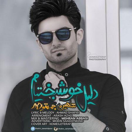 https://up.mybia4music.com/music/95/1/Shahin%20Jamshidpour%20%96%20Dalile%20Khoshbakhtiam.jpg