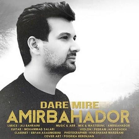 https://up.mybia4music.com/music/95/2/Amir%20Bahador%20-%20Dare%20Mire.jpg