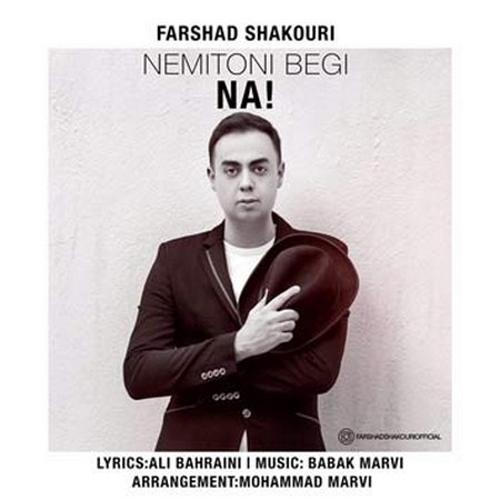 https://up.mybia4music.com/music/95/4/Farshad%20Shakouri%20-%20Nemitoni%20Begi%20Na.jpg