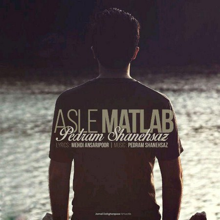 https://up.mybia4music.com/music/95/5/Pedram%20Shanehsaz%20-%20Asle%20Matlab.jpg