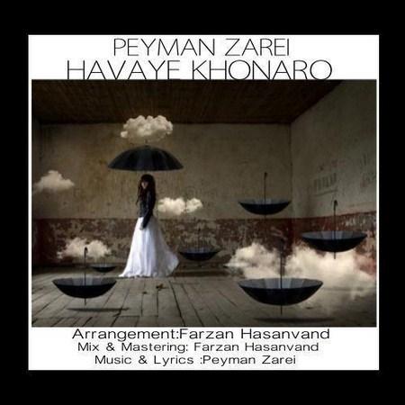 https://up.mybia4music.com/music/95/6/Peyman%20Zarei%20-%20Havaye%20Khoonaro.jpg