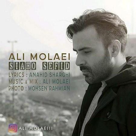 https://up.mybia4music.com/music/95/9/Ali%20Molaei%20%e2%80%93%20Siaho%20Sefid.jpg