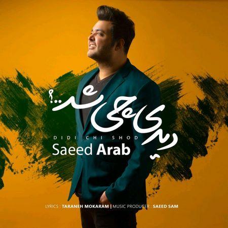 دانلود آهنگ سعید عرب بنام دیدی چی شد